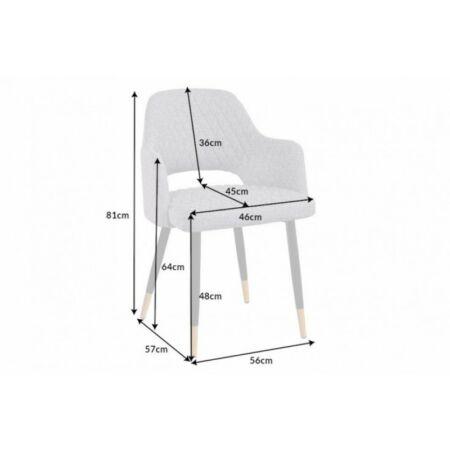 Paris bársony világosszürke szék - 2 db
