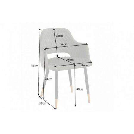 Paris bársony szürkészöld szék - 2 db