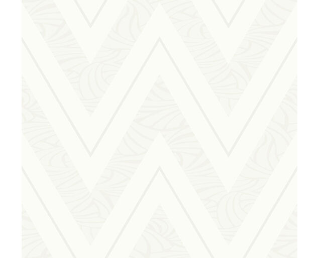 Black and White - Chevron with Skin Texture -21007