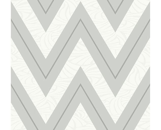 Black and White - Chevron with Skin Texture -21010